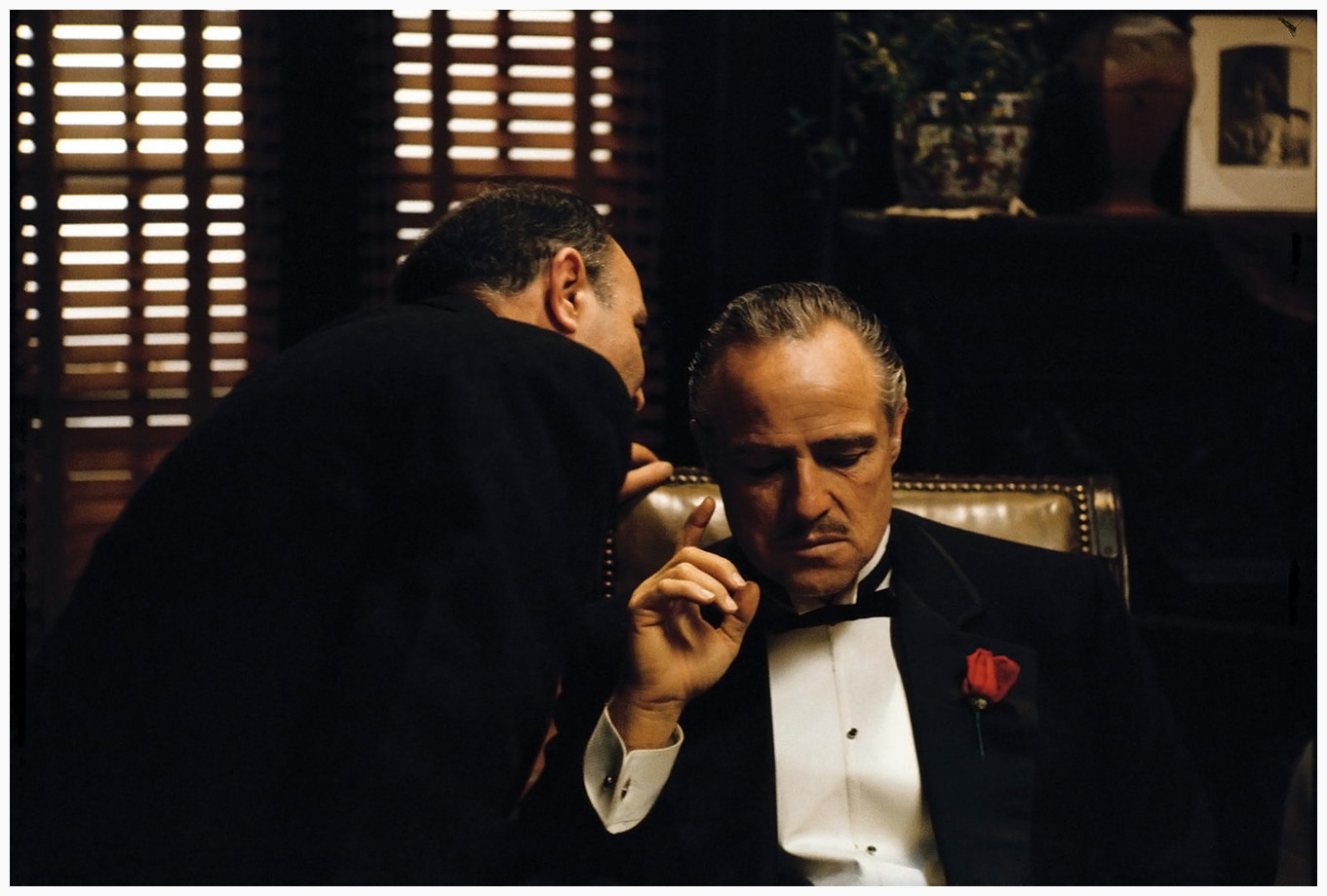 Brando - godfather